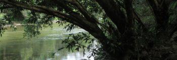 Ňiňa je holčička anebo taky řeka